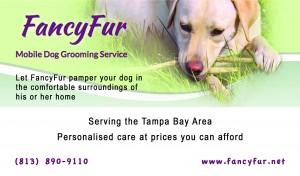 FancyFur Business Card