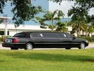 Limo in Tampa