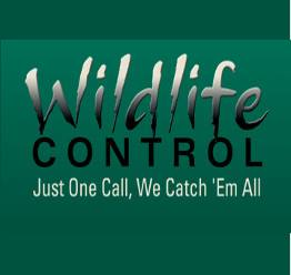 wildlife control florida