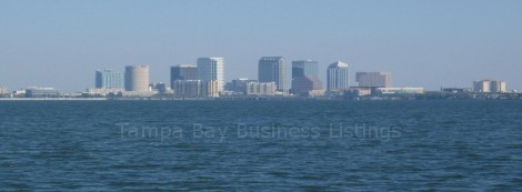 tampa business